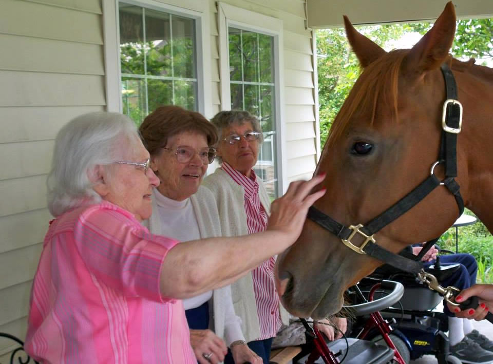 Visiting with the Horse